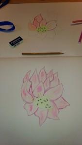 Suite du lotus