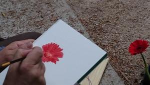 La fleur de sylvain